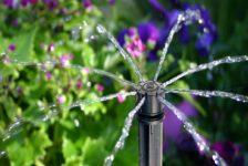 Irrigation-Drip-Lines1